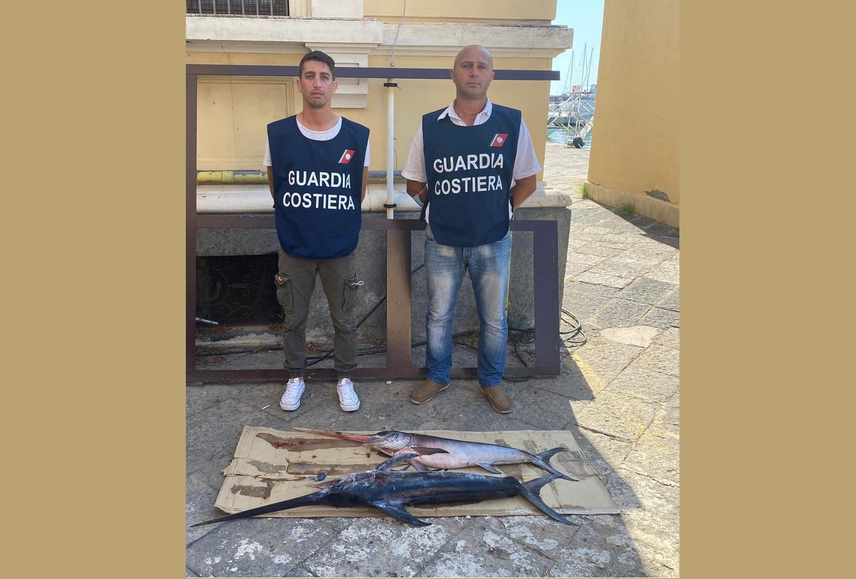 Catania, oltre 250 chili di pescato vietato: prodotti sequestrati e dichiarati non commestibili