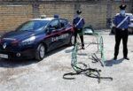 Corsa clandestina di cavalli all'alba nel Catanese: denunciate 16 persone, morto un animale