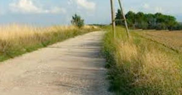 """Venti milioni di euro per ricostruire le strade rurali in Sicilia, Musumeci: """"Una priorità del mio governo"""""""
