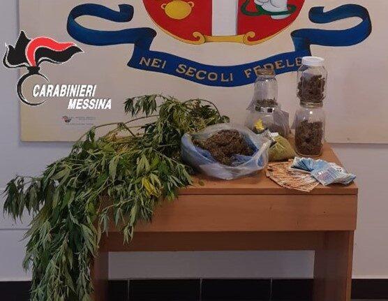 Blitz antidroga: trovate piante di cannabis, dosi di marijuana e una serra per essiccazione