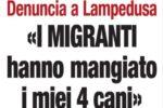 """Orrore a Lampedusa, denuncia shock: """"I migranti hanno mangiato i miei quattro cani"""""""