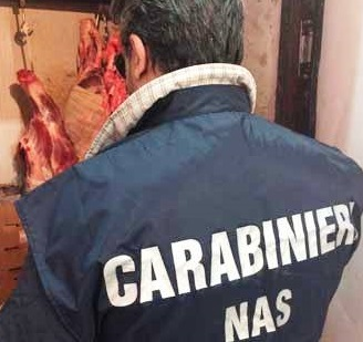 Macellazione clandestina a Catania: sequestrata una tonnellata di carne di cavallo – DETTAGLI