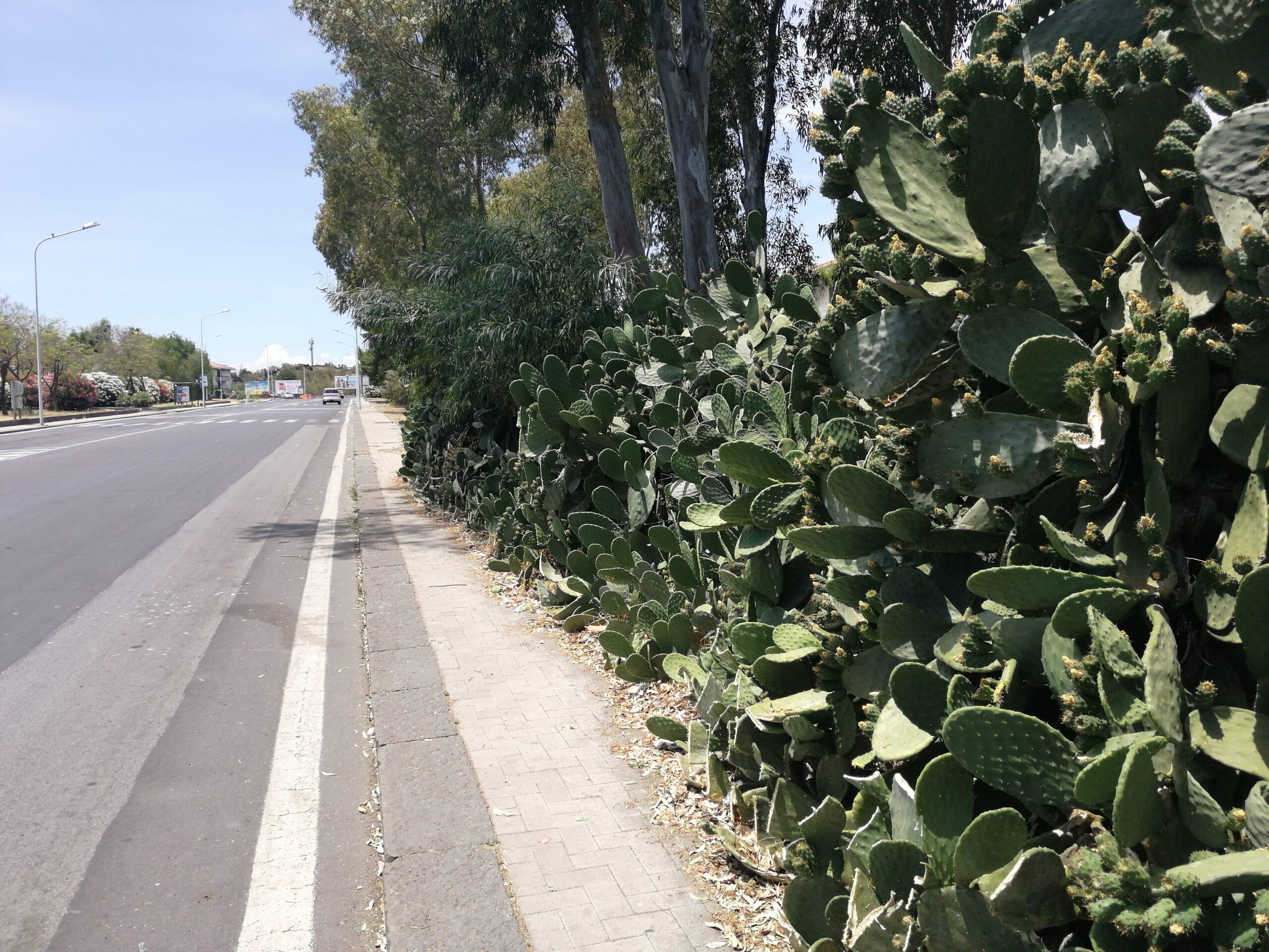 Via Ballo e piazza Ignazio Roberto a Cibali, una sicurezza stradale ancora impossibile