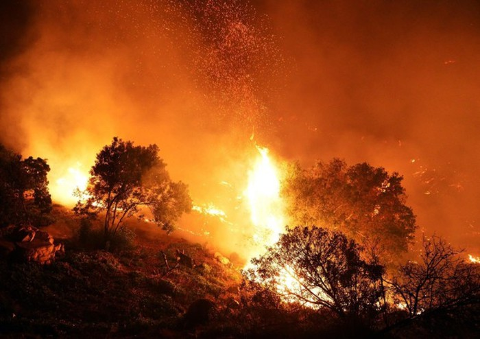 Notte di fuoco nel Palermitano, lingue di fuoco distruggono vegetazione e minacciano i residenti