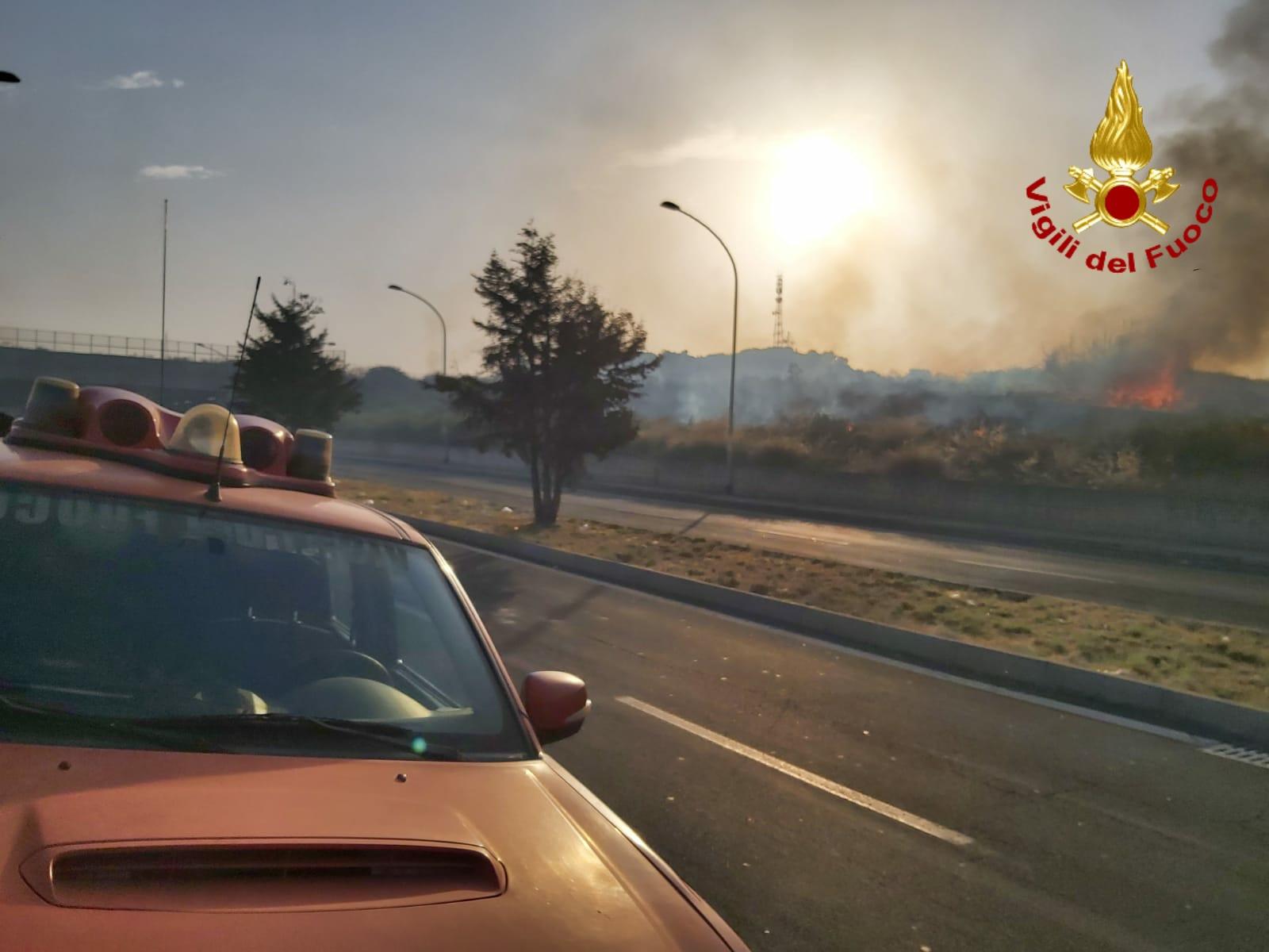 Paura a San Giorgio, vasto incendio vicino al Borgo delle Magnolie: fiamme alimentate dal vento – FOTO