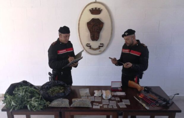Droga, denaro, armi e due serpenti vivi: perquisizione porta all'arresto di un 46enne cubano