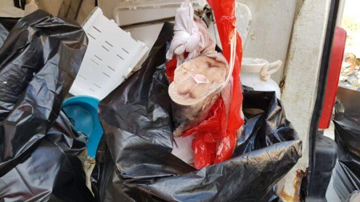Furgone di una pescheria di quartiere carico di scarti di pesce: mezzo sequestrato