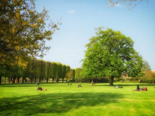 Venti troppo forti, a rischio l'incolumità dei cittadini: disposta la chiusura di giardini e ville comunali