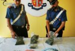Urla per una lite in famiglia incastrano pusher: militari trovano migliaia di euro e marijuana in casa