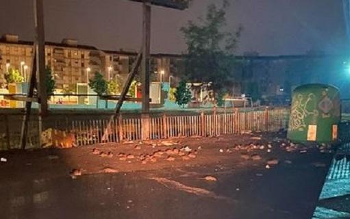 """Topi assaltano via Ustica e piazza Montana, l'ira dei residenti. Buceti: """"Situazione allarmante"""" – VIDEO"""