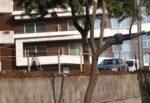 Catania, continua nel quartiere Borgo-Sanzio la pratica barbara della capitozzatura degli alberi