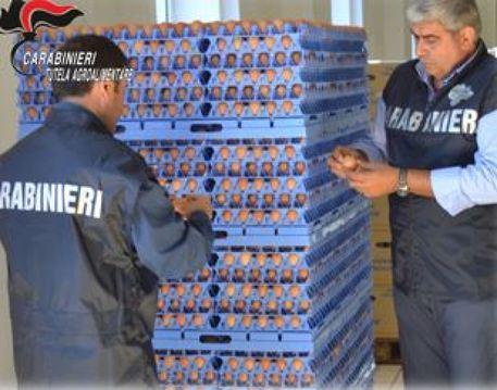Blitz in un'impresa avicola: sequestrate 5mila uova postdatate con scadenza falsificata