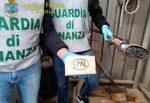 Catania, 7 imprese nel mirino della Finanza: 12 lavoratori in nero, 5 percepivano il Reddito di Cittadinanza