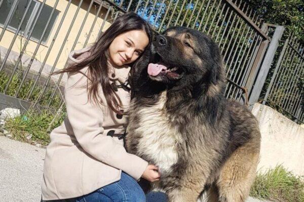 Ennesima tragedia al Policlinico, 21enne cade da cavallo e muore: la vittima è Angelica Pitò