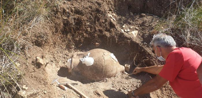 Sicilia, anfora tombale ritrovata vicina al sito archeologica di Himera