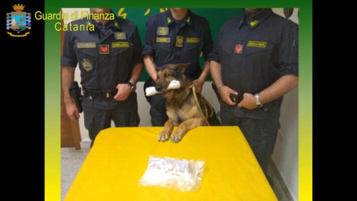 Catania, scoperto appartamento come deposito di narcotici: trovata cocaina, 21enne denunciato