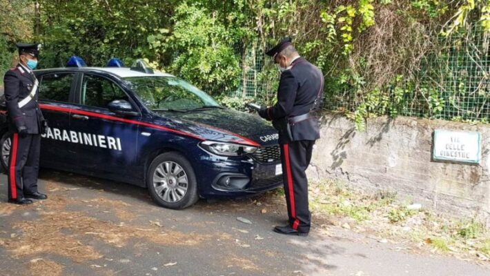 Tanta voglia di castagne, due giovani ne portano via 80 chili da una proprietà: fermati dai carabinieri