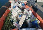 Dispositivi di concentrazione di pesci, sequestro della Guardia Costiera dei cosiddetti cannizzi