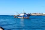 Lampedusa, 263 migranti trasferiti sulla nave quarantena Allegra