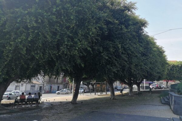 Pulizia e decoro a Cibali: Ferrara e Buceti chiedono interventi a piazza Bonadies