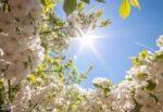 Meteo Sicilia domani, le previsioni per il 14 aprile: temperature fino a 20°C ma non ovunque