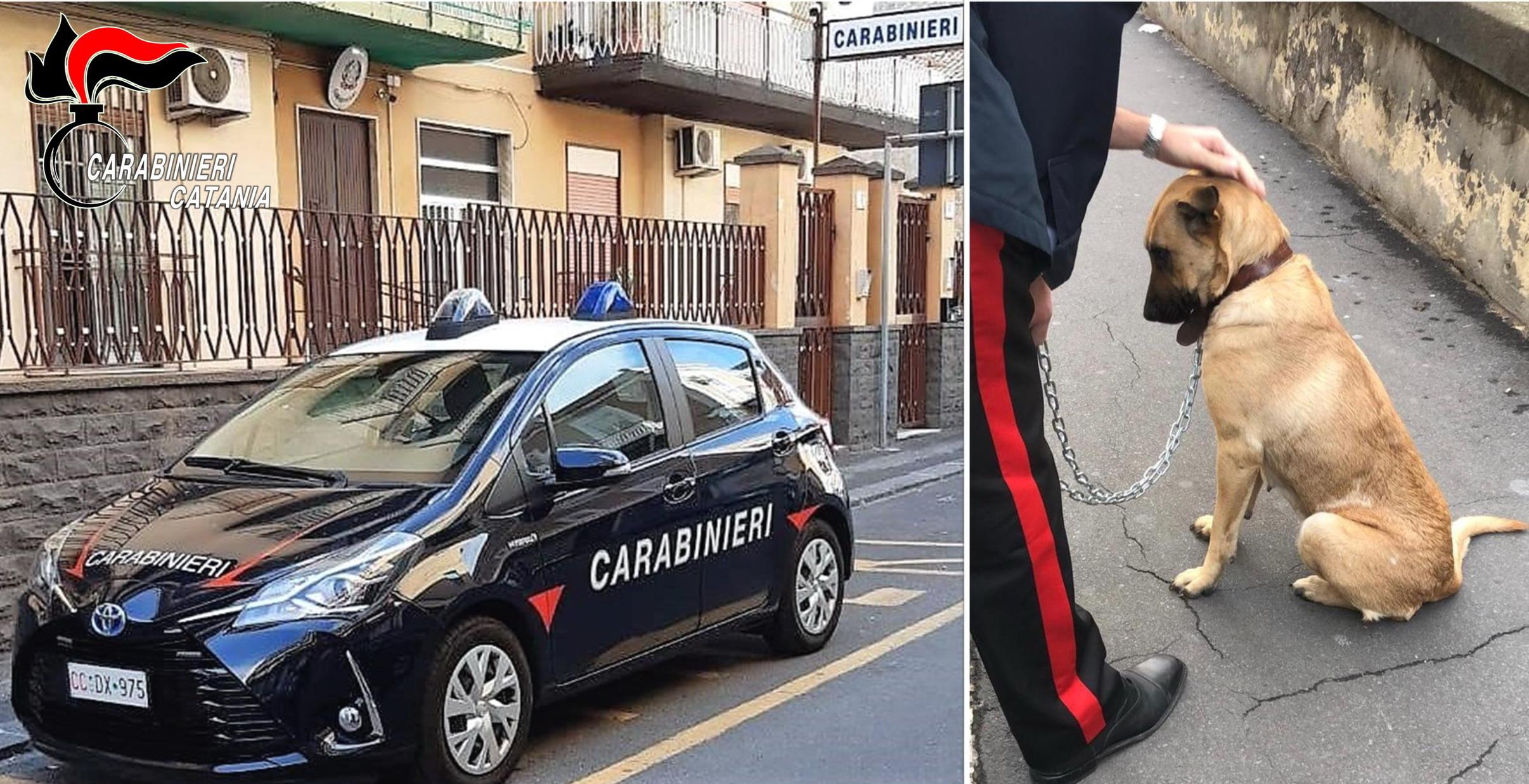 Catania, abbandona il cane per due ore in macchina sotto il sole: denunciato un 24enne