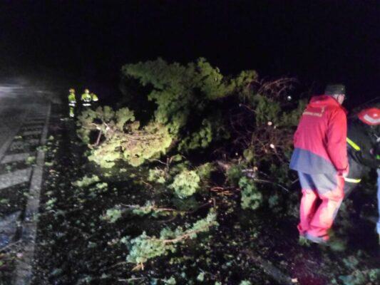 Tromba d'aria a Catania, nuove immagini della terrificante notte: ingenti danni al viale Kennedy – FOTO e VIDEO