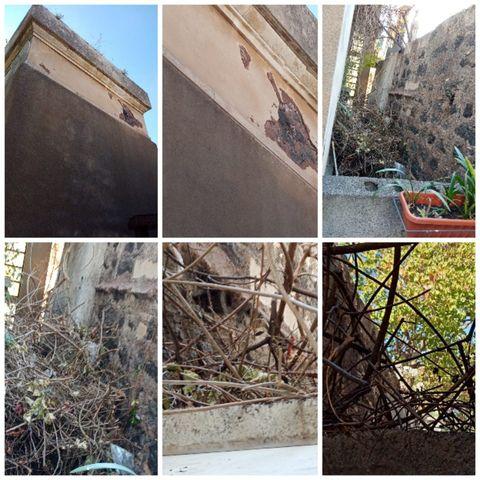 """Cimitero di Catania, rifiuti e sporcizia vicino alle tombe. Arcidiacono: """"Entro il 2021 presenterò un cimitero dignitoso"""""""