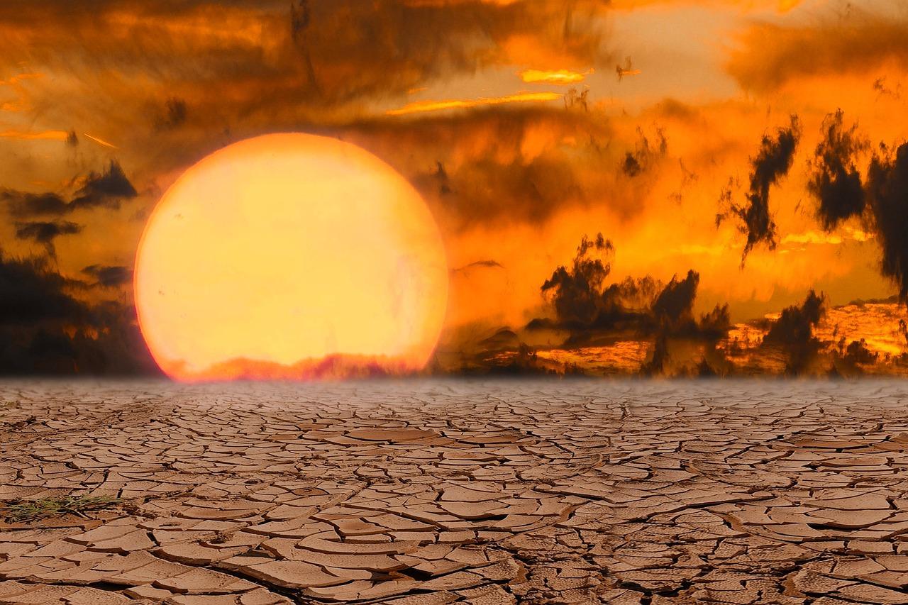 Cambiamento climatico, emergenza dimenticata di un drammatico 2020