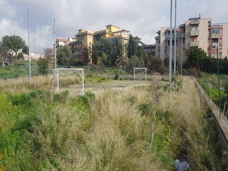 Catania, campetto di via Galermo circondato dalle erbacce: il consigliere Zingale chiede interventi