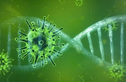 Vaccino anti-Covid, dalla paura degli effetti collaterali agli altri dubbi: il confronto col medico di famiglia