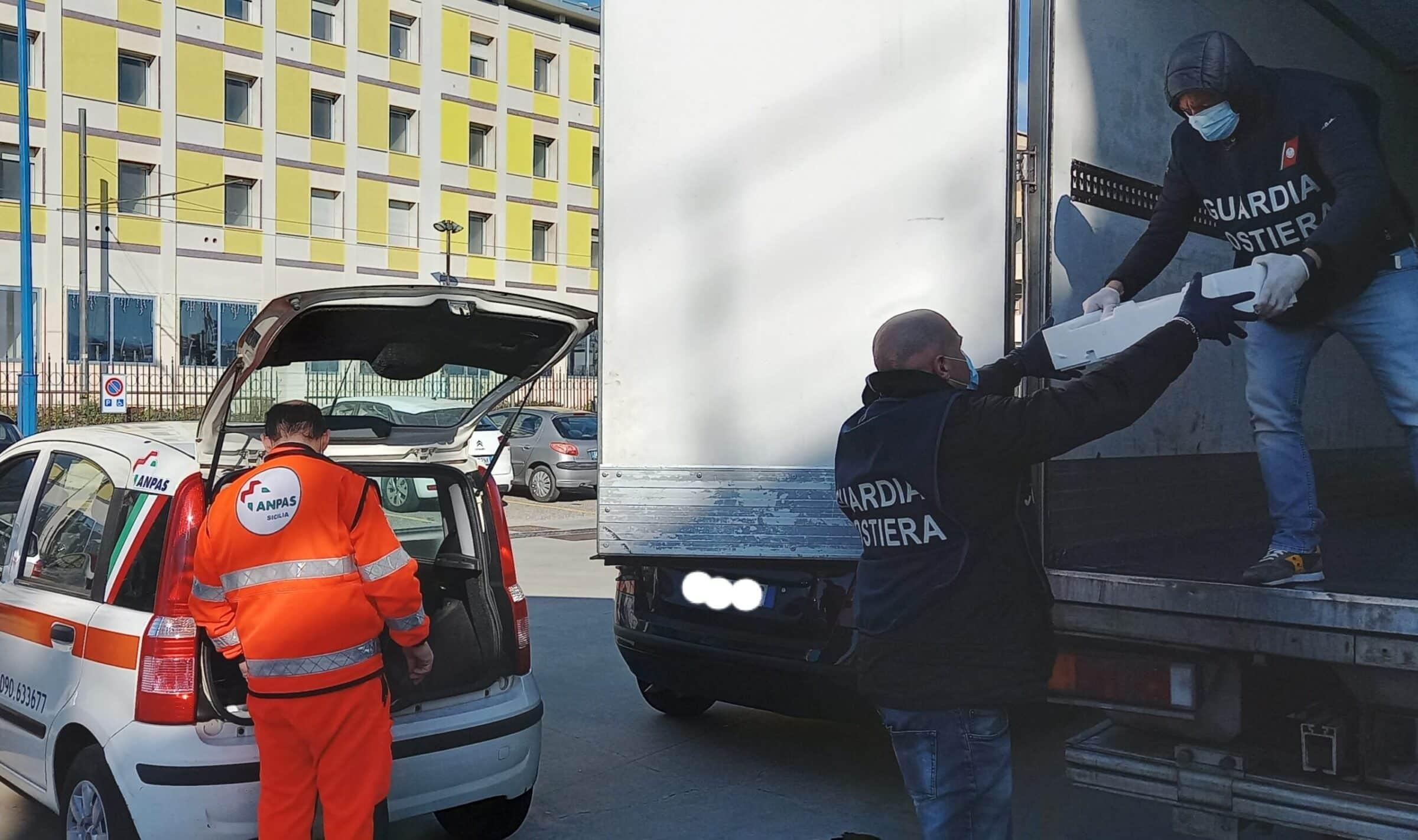 """Maxi intervento della Guardia Costiera: sequestro di 800 Kg di """"neonata"""", 28mila euro di sanzioni"""