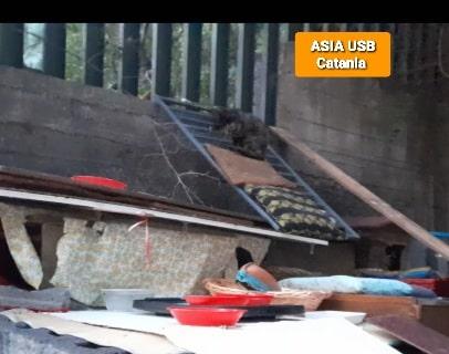 """Catania, il dramma della pandemia vista dagli occhi di un senzatetto: """"In quanti come lui in città?"""" – VIDEO"""