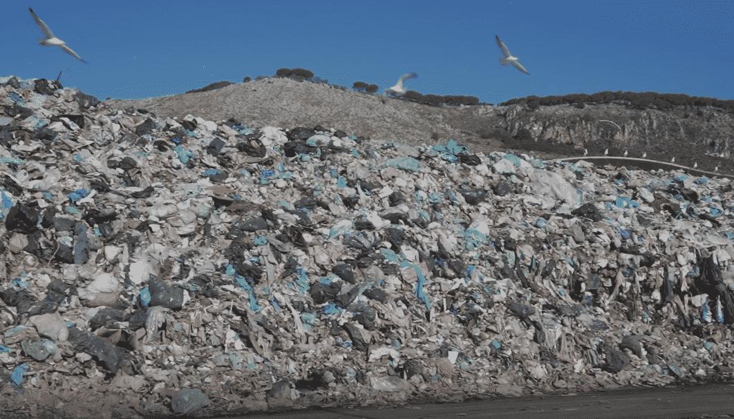"""Bellolampo invasa dai rifiuti, Gelarda (Lega): """"Ventimila tonnellate di rifiuti non trattati"""""""