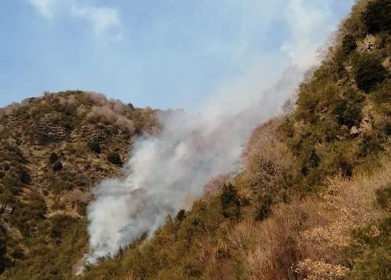 Fumo sull'Etna, stavolta non è un nuovo parossismo: incendio nella Valle del Bove