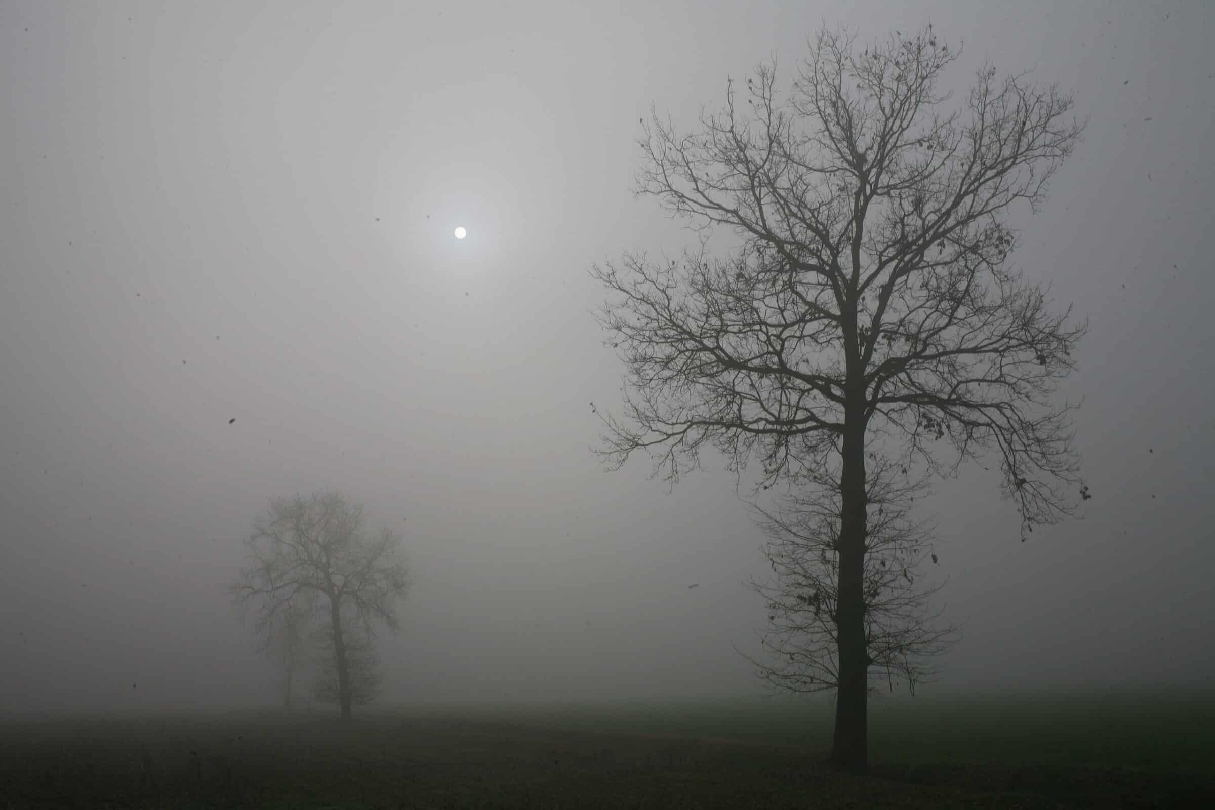 Meteo Sicilia domani, torna il sole ma si abbassa la nebbia? Le previsioni del 23 febbraio