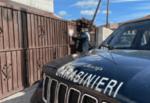 Autocarrozzeria senza autorizzazioni e norme di sicurezza: oltre 20mila euro di multa, sequestrate le auto in attesa di riparazione
