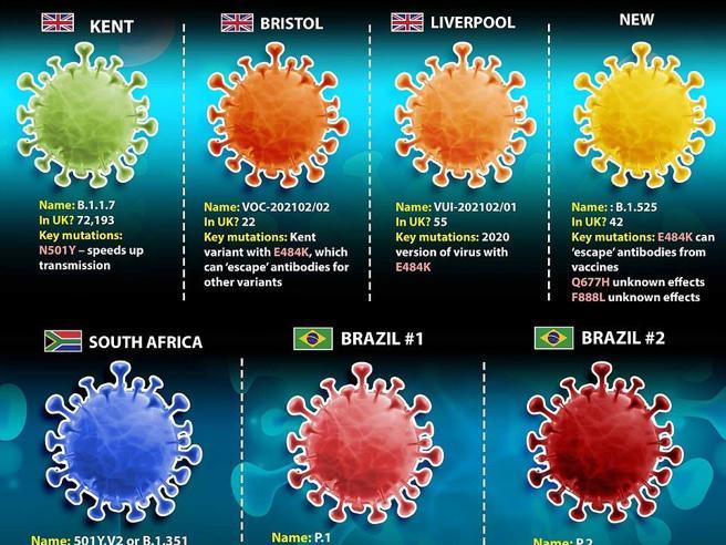 Coronavirus, varianti inglese e brasiliana individuate nelle acque di scarico in Italia: la ricerca dell'Iss