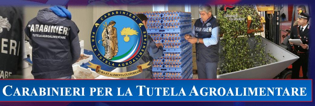"""Operazione """"Mansueto"""", controlli serrati in 55 aziende: sequestro ingente di uova, carni e formaggi"""