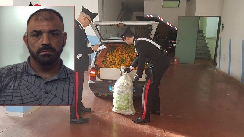Ruba 500 chili di agrumi e colpisce proprietario del fondo con il cric: arrestato catanese