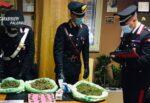 È ai domiciliari per droga ma se ne infischia e va al bar, pusher 19enne arrestato più volte per evasione