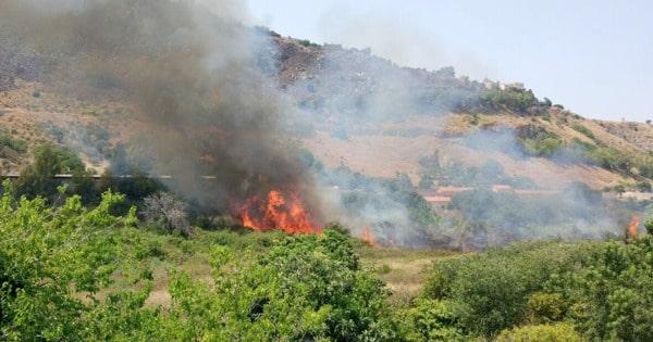 Boschi in Sicilia, dalla Regione 50 milioni per la prevenzione incendi e il dissesto – LA GRADUATORIA
