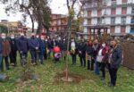 Giornata della donna, le iniziative a Gravina di Catania