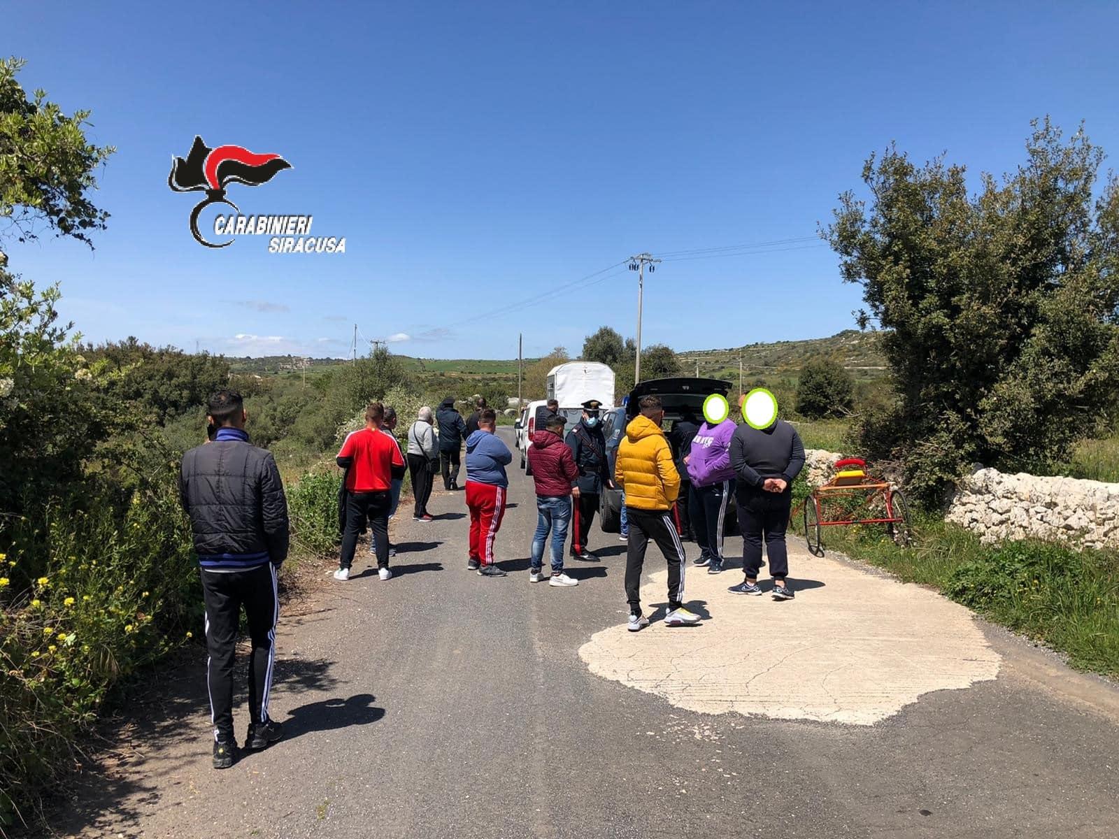 Blitz dei carabinieri sulla Maremonti: interrotta corsa clandestina, sequestrato un equino e denunciate 16 persone – Le FOTO