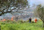 Vasto incendio distrugge 4 ettari di terreno: il vento ha peggiorato e aumentato le fiamme – FOTO