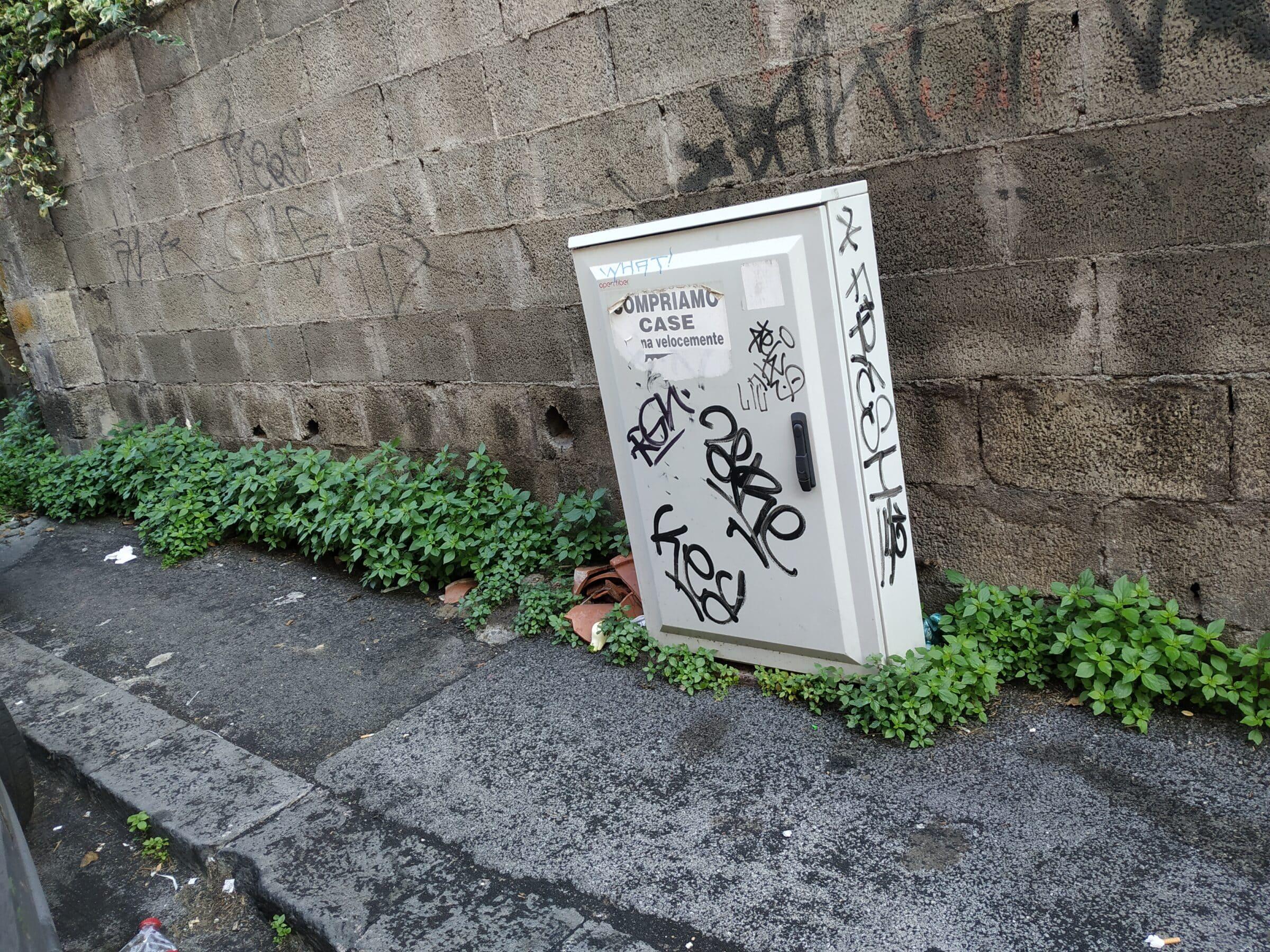 Catania, degrado nel quartiere Borgo-Sanzio: dai marciapiedi pieni di erba ai topi. La segnalazione del Comitato Cittadino Vulcania