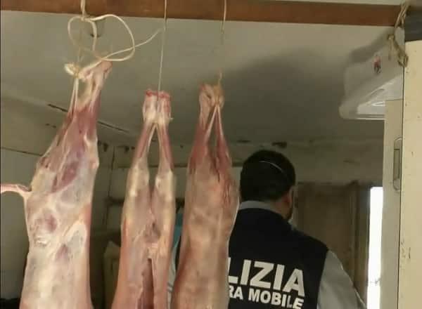 Carcasse di animali in frigo, sangue sui coltelli e niente igiene: denunciato un 61enne ennese