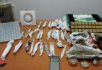 Giovane pusher nascondeva droga in casa, i carabinieri indagano: trovati 4mila euro di marijuana pronti allo spaccio