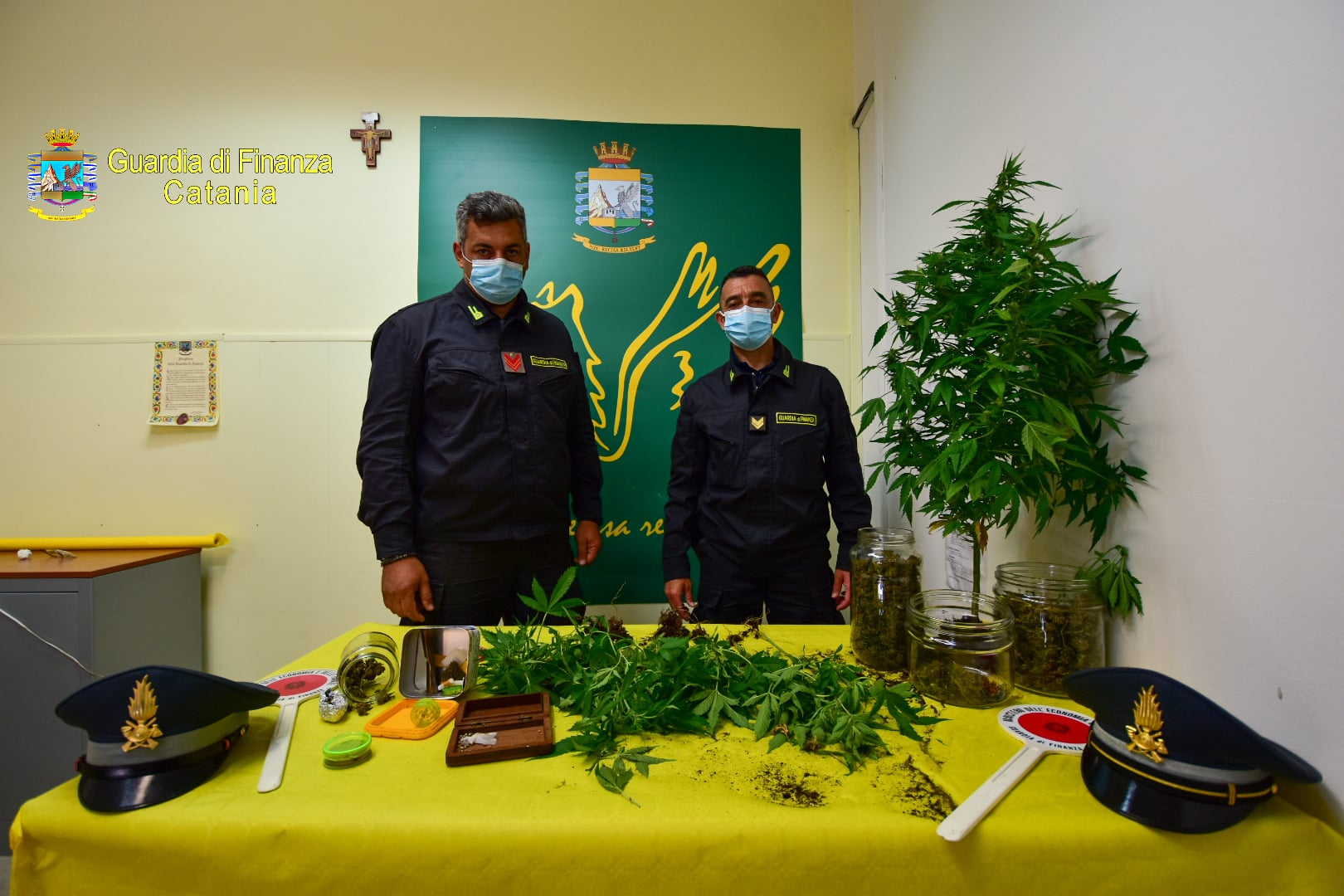 Catania, da Riposto a Sant'Alfio nascondeva marijuana e piantine: arrestato il pusher e sequestrata la droga