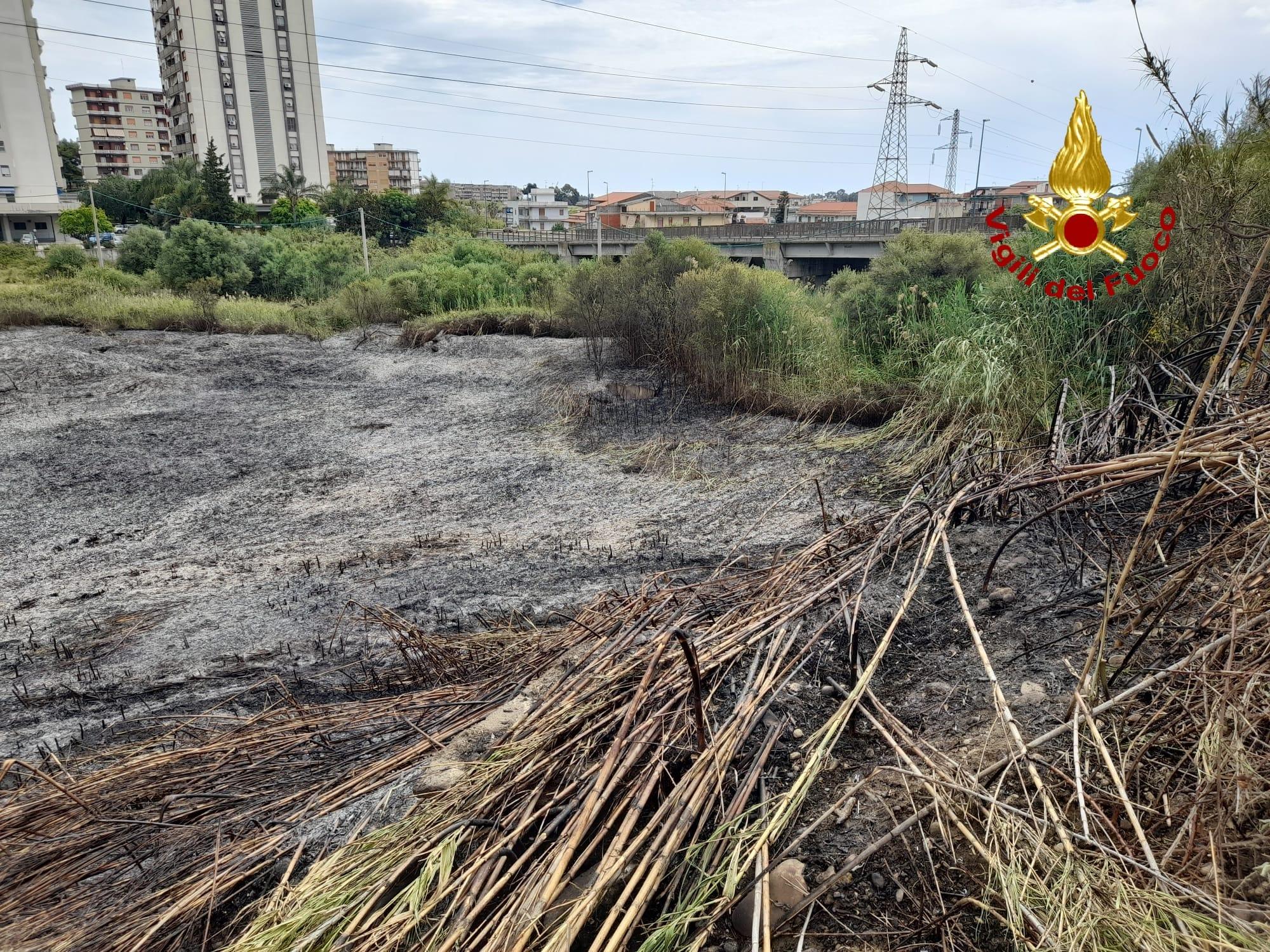 Incendio a Librino, a fuoco circa 3 ettari di canneto e sterpaglie: le FOTO dei vigili del fuoco in azione